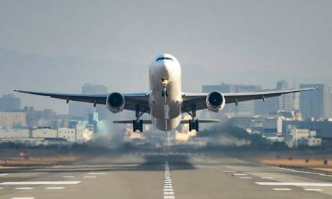 Άφωνοι οι επιβάτες αεροσκάφους: Ταξίδευε μαζί τους ένα... κοάλα!