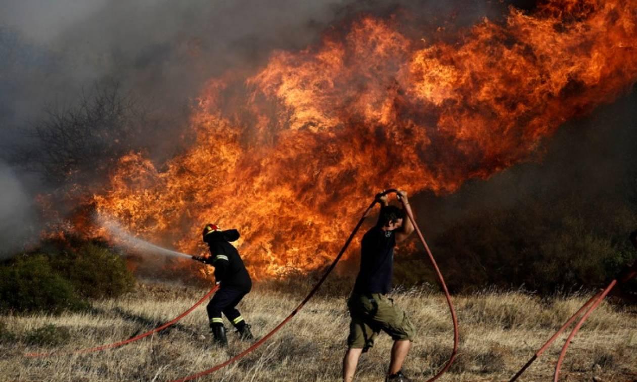 Φωτιά ΤΩΡΑ: Υπό μερικό έλεγχο η πυρκαγιά στο Κορωπί