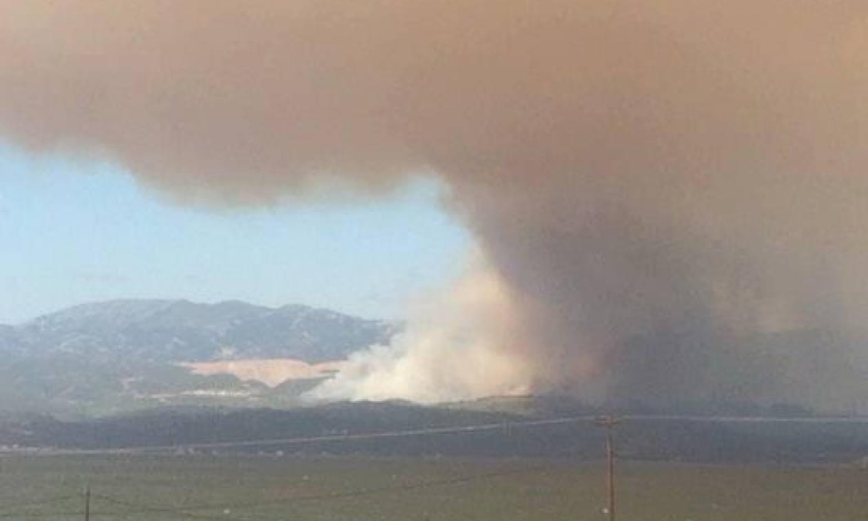 Φωτιά Εύβοια: Εκκενώθηκαν τα χωριά Κοντοδεσπότι και Σταυρός (pics+vid)