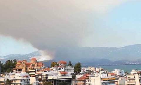 Φωτιά Εύβοια: Ανατριχιαστικά βίντεο και φωτογραφίες από την πύρινη κόλαση