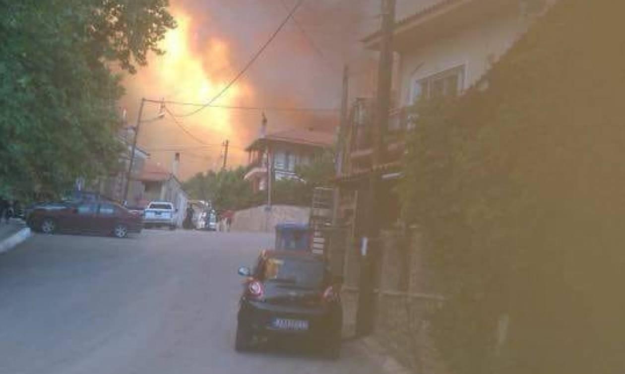 Φωτιά Εύβοια: Συγκλονιστικά βίντεο την ώρα που εκκενώνεται το Κοντοδεσπότι