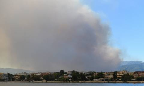 Φωτιά Κοντοδεσπότι Ευβοίας: Έκλεισε ο δρόμος από Χαλκίδα προς Βόρεια Εύβοια