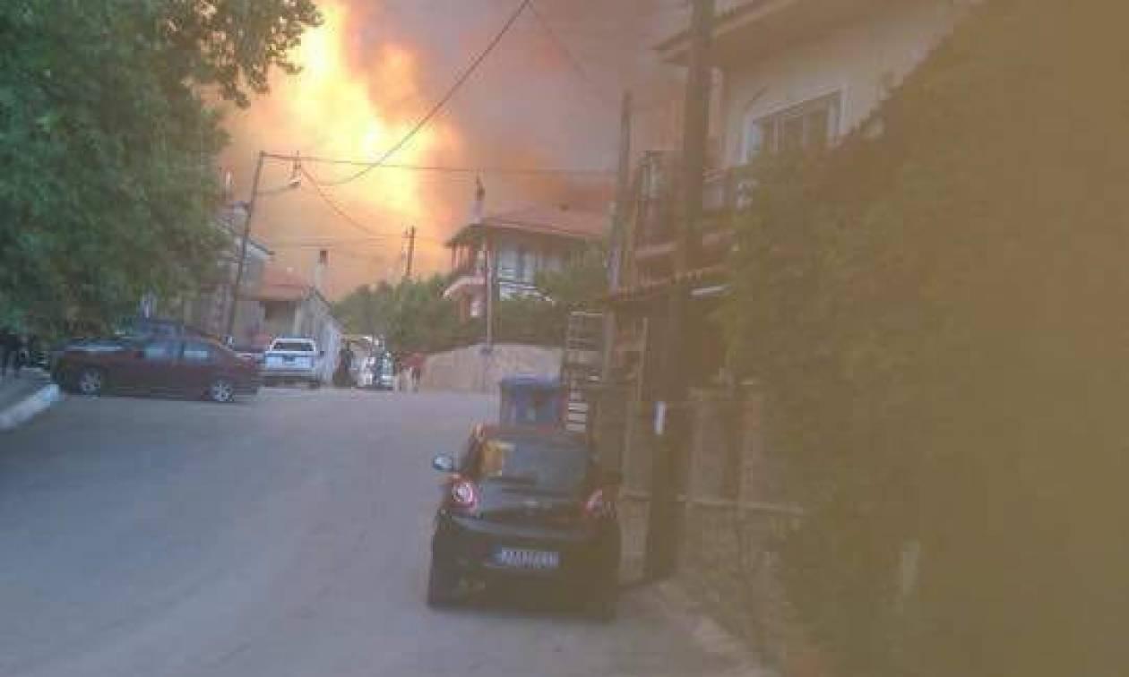 Φωτιά Εύβοια: Πύρινη κόλαση στο Κοντοδεσπότι – Δύσκολη νύχτα για τους κατοίκους (pics+vids)