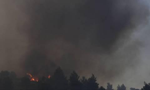 Φωτιά Εύβοια: Συνεχής η ενημέρωση του πρωθυπουργού