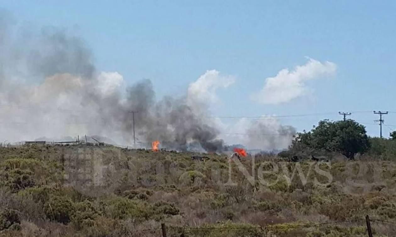 Φωτιά στην περιοχή Κορακιές Χανίων (pics)