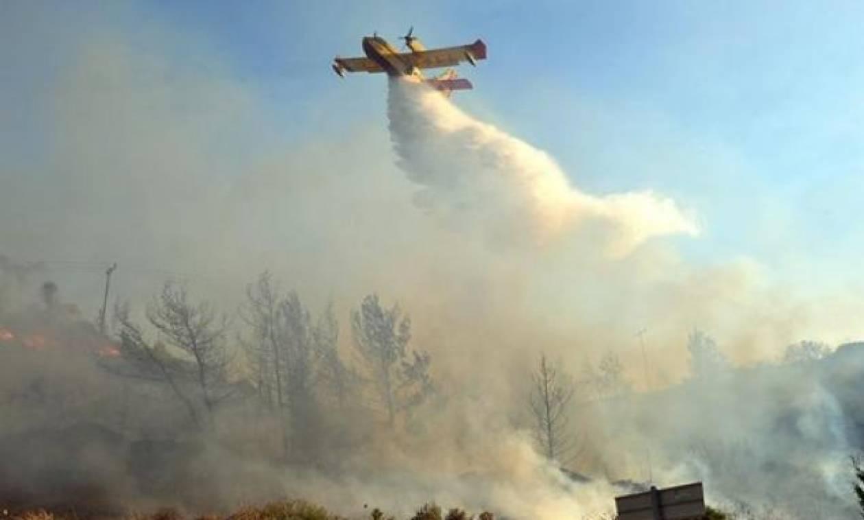Ρόδος: Μεγάλη φωτιά ΤΩΡΑ κοντά σε μοναστήρι