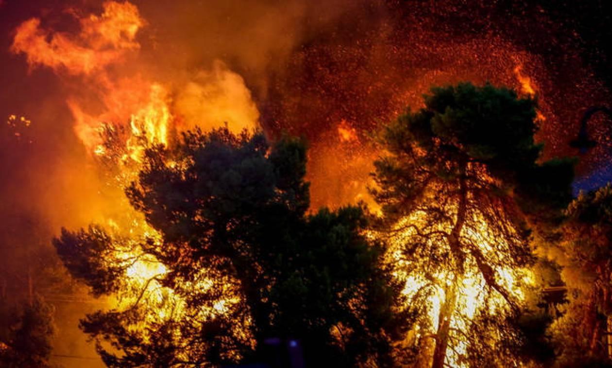 Φωτιά ΤΩΡΑ: Πυρκαγιά στο Αχλαδόκαστρο Αιτωλοακαρνανίας (χάρτης)