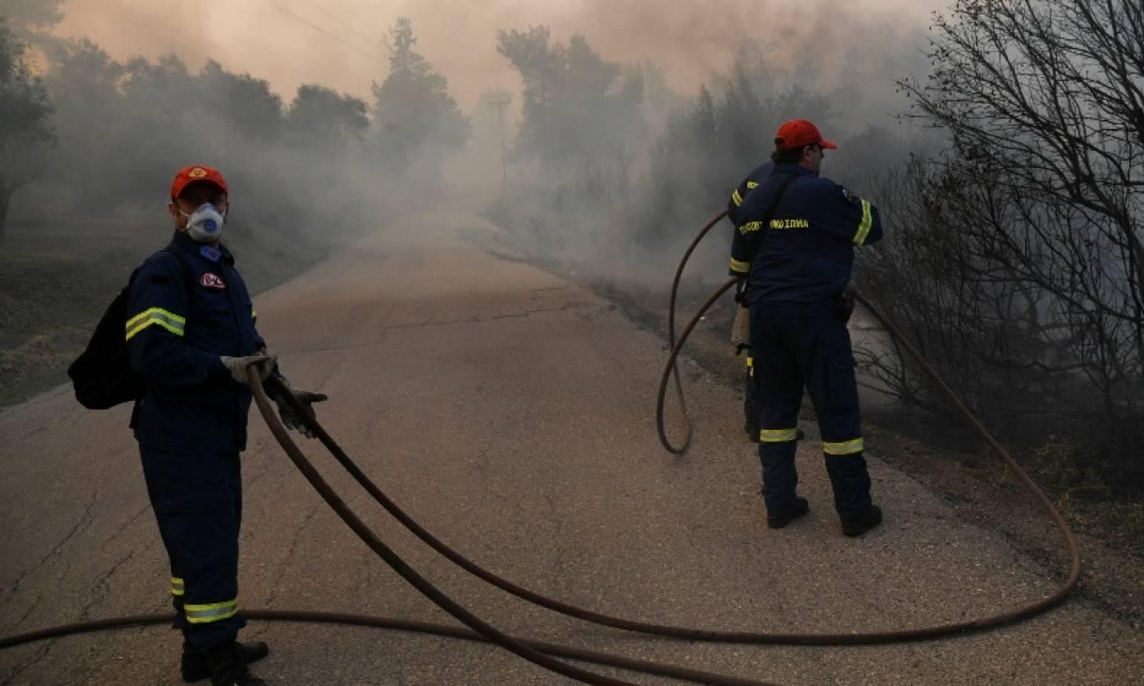 Φωτιά: Συναγερμός για πυρκαγιά στον Μαραθώνα