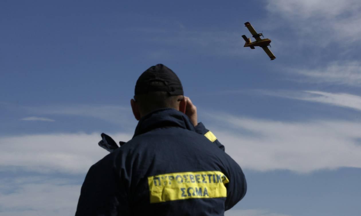 Τα μποφόρ «φέρνουν» συναγερμό: Ποιες περιοχές κινδυνεύουν αύριο (19/08) από φωτιά
