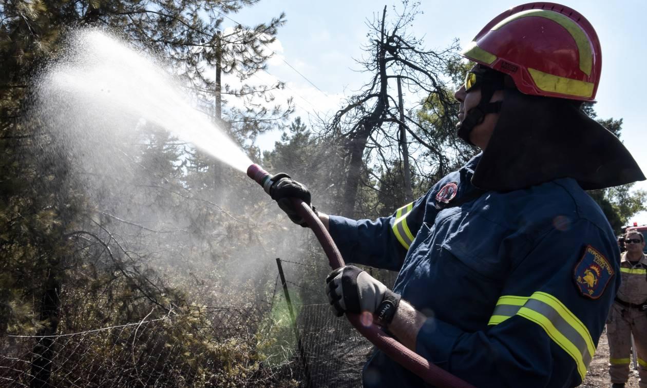 Φωτιά ΤΩΡΑ: Διπλό μέτωπο σε Κερατέα και Καλύβια