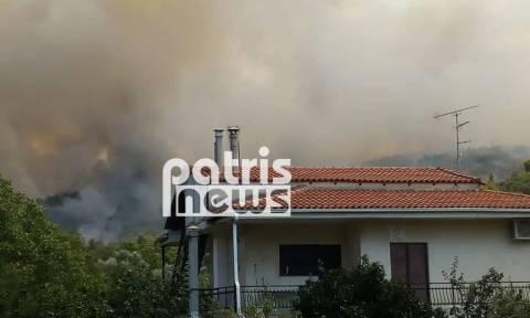 Φωτιά: Μεγάλη πυρκαγιά ΤΩΡΑ στην Αμαλιάδα - Εκκενώνεται χωριό
