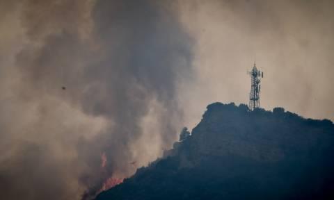 Φωτιά Ηλεία: Συνελήφθησαν δύο άτομα για τις πυρκαγιές στο Γεράκι