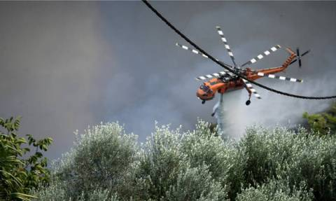 Υπό μερικό έλεγχο η φωτιά στην Ηλεία