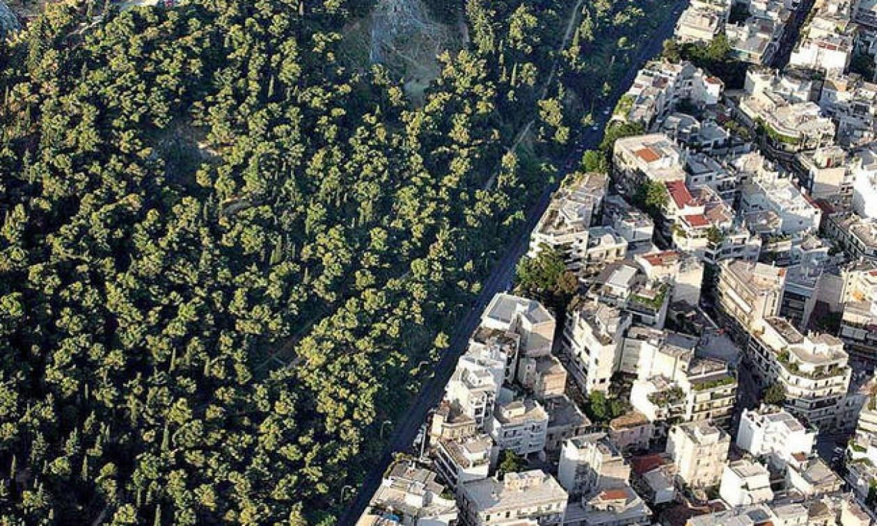 Τελειώνει η προθεσμία για το Κτηματολόγιο και τους δασικούς χάρτες - Σε εκκρεμότητα 39 δήμοι