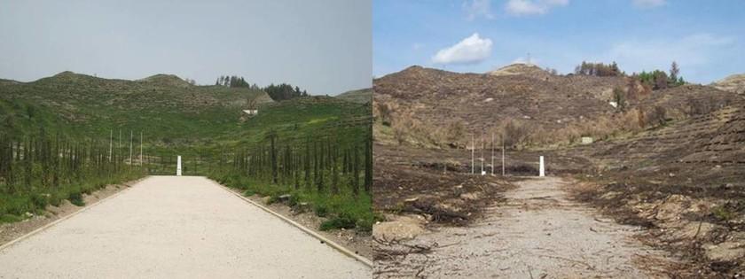 Έντεκα χρόνια από τη φρίκη της Ηλείας: Οι πυρκαγιές που εξελίχθηκαν σε εθνική τραγωδία (pics+vids)