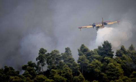 Υπό μερικό έλεγχο η φωτιά στoν Τύρναβο Λάρισας