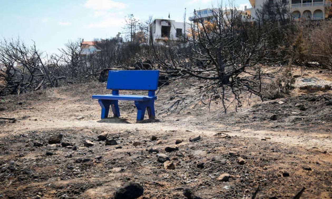 Φωτιά Μάτι: «Καίει» Δούρου, Ψινάκη και Καπάκη η μήνυση της χήρας Φύτρου