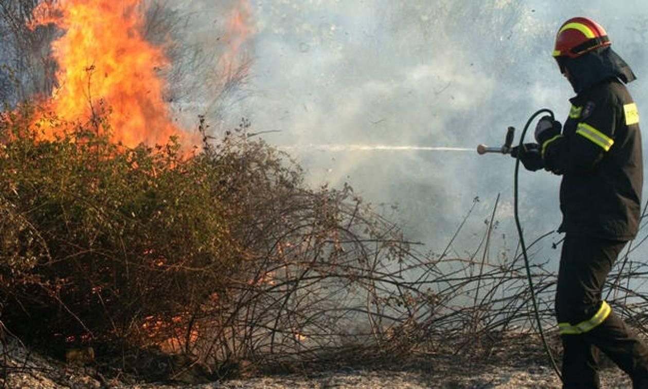 Ο χάρτης πρόβλεψης κινδύνου πυρκαγιάς για τη Δευτέρα 27/8 (pic)