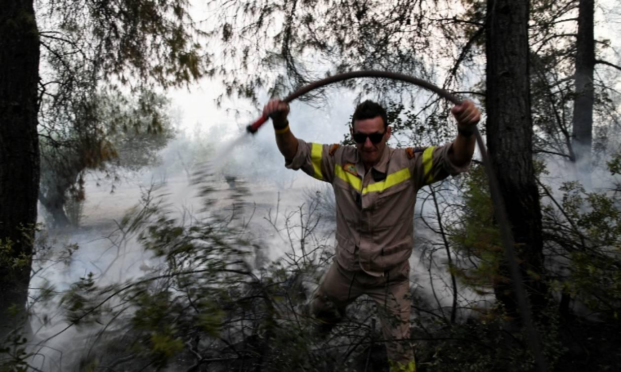 Φωτιά: Συναγερμός για πυρκαγιά στην Εύβοια