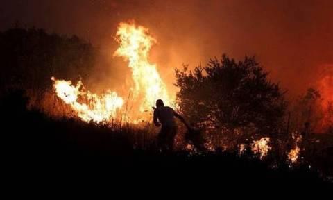 Φωτιά Εύβοια: Σε ύφεση με μικρές αναζωπυρώσεις η πυρκαγιά στην περιοχή Ροβιές (χάρτης)
