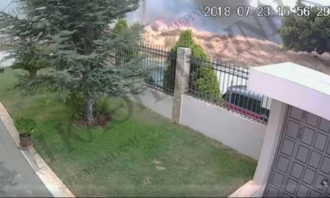 Στον εισαγγελέα υποβλήθηκε η δικογραφία για την φονική πυρκαγιά που ξέσπασε στο Νταού Πεντέλης