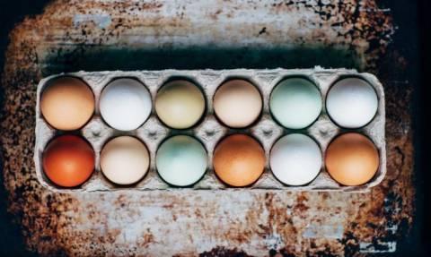 Τροφική δηλητηρίαση: Αυτά που πρέπει οπωσδήποτε να προσέξουμε