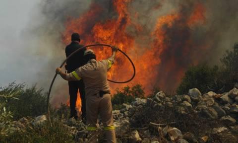 Φωτιά ΤΩΡΑ: Μαίνεται η πυρκαγιά στη Ζάκυνθο