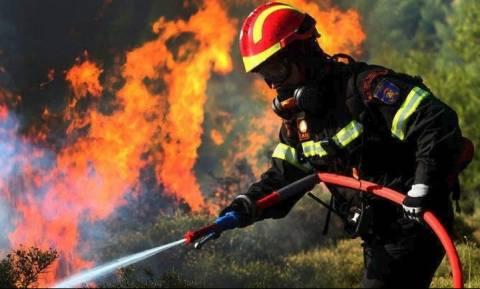 Προσοχή! Σε αυτές τις περιοχές υπάρχει πολύ υψηλός κίνδυνος πυρκαγιάς την Τρίτη (4/9)