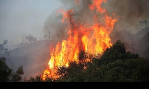 Υπό μερικό έλεγχο η φωτιά στη Μάνη - Δύο πυροσβέστες τραυματίες