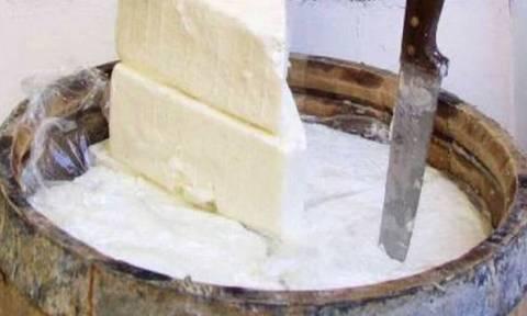 Βρέθηκαν τα ίχνη του αρχαιότερου τυριού στη Μεσόγειο - Mπορεί να ήταν... φέτα