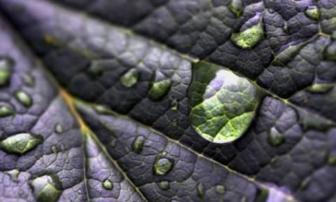 В Крыму спрогнозировали кислотные дожди из-за испарений с отстойника химзавода