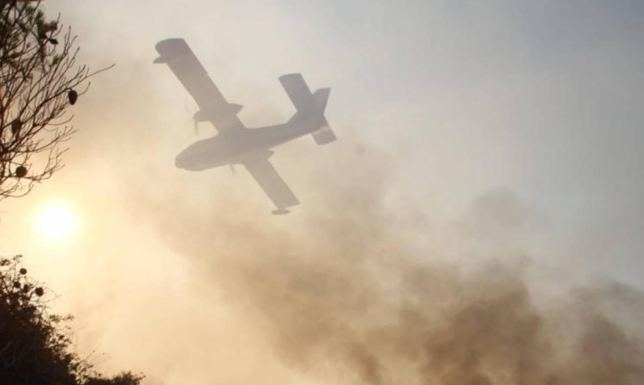 Μεγάλη φωτιά στην Αρκαδία – Τεράστια κινητοποίηση της Πυροσβεστικής