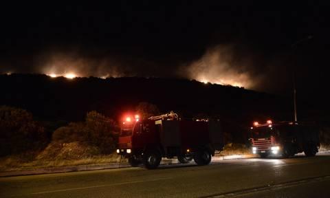 Τρίπολη: Υπό μερικό έλεγχο η φωτιά στην περιοχή Χιράδες Αρκαδίας