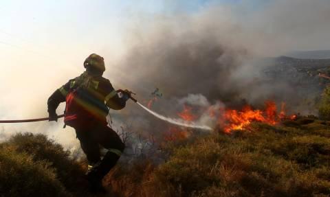 Φωτιά: Ολονύχτια μάχη με τις φλόγες στον Κέδρο Σάμου - Ενισχύθηκαν οι πυροσβεστικές δυνάμεις