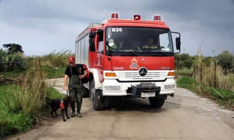 Προσοχή! Υψηλός και αύριο Δευτέρα ο κίνδυνος εκδήλωσης πυρκαγιάς (χάρτης)