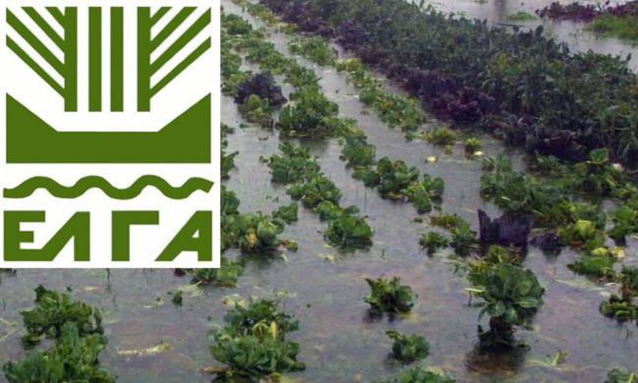 ΕΛΓΑ: Μέσα στις επόμενες ημέρες το 20% των αποζημιώσεων για τις καταστροφές του 2017
