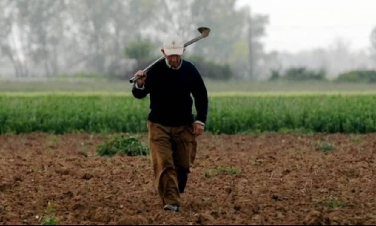 Ποιοι αγρότες θα πάρουν χρήματα τις επόμενες ημέρες