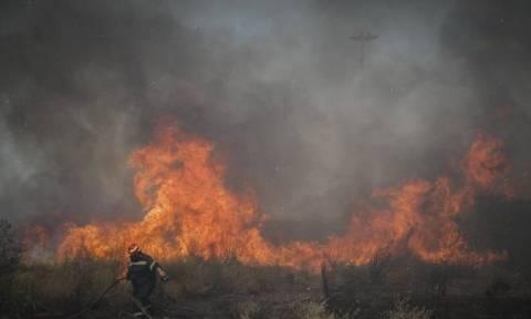 Ο χάρτης πρόβλεψης κινδύνου πυρκαγιάς για την Τρίτη 18/9 (pic)