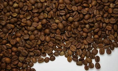 «Λαβράκι» του ΣΔΟΕ: Κατασχέθηκαν 20 τόνοι λαθραίου καφέ σε επιχείρηση στη Θέρμη