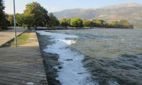 Ιωάννινα: Πήγαν στη λίμνη και αντίκρισαν αυτές τις ασυνήθιστες εικόνες (pics)