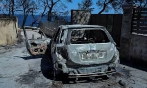Μάτι - Μήνυση - κόλαφος από τον αδερφό της Ελισάβετ που «χάθηκε» μαζί με τη μητέρα της στις φλόγες
