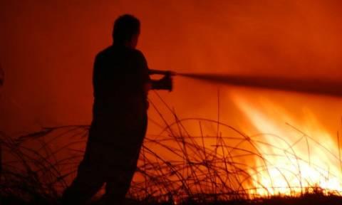 Φωτιά στη Βάρκιζα