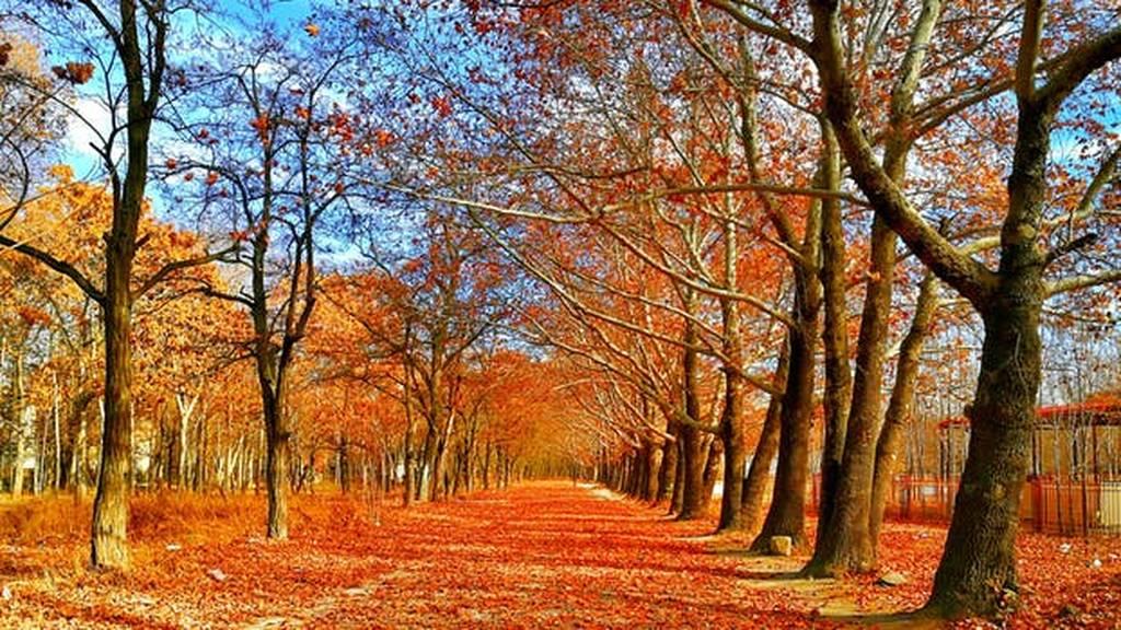 Επίσημα Φθινόπωρο από την Κυριακή - Αρχίζει να μικραίνει η μέρα