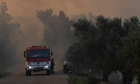 «Μάχη» με τις φλόγες σε Αχαΐα, Ηλεία και Αιτωλοακαρνανία