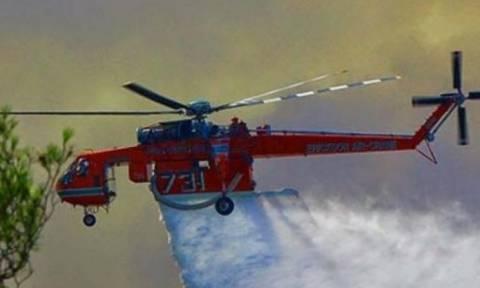 Φωτιά ΤΩΡΑ: Μεγάλη πυρκαγιά στην Ιεράπετρα