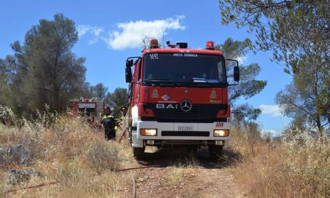 Συναγερμός στην Πυροσβεστική: Ποιες περιοχές κινδυνεύουν αύριο (25/09) από φωτιά