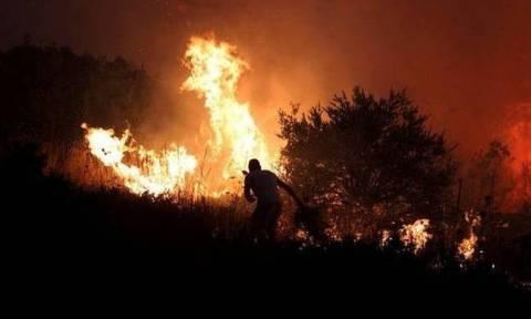 Φωτιά ΤΩΡΑ στη Θεσσαλονίκη: Σε εξέλιξη μεγάλη πυρκαγιά στη ΒΙΠΕ Σίνδου (pics&vid)