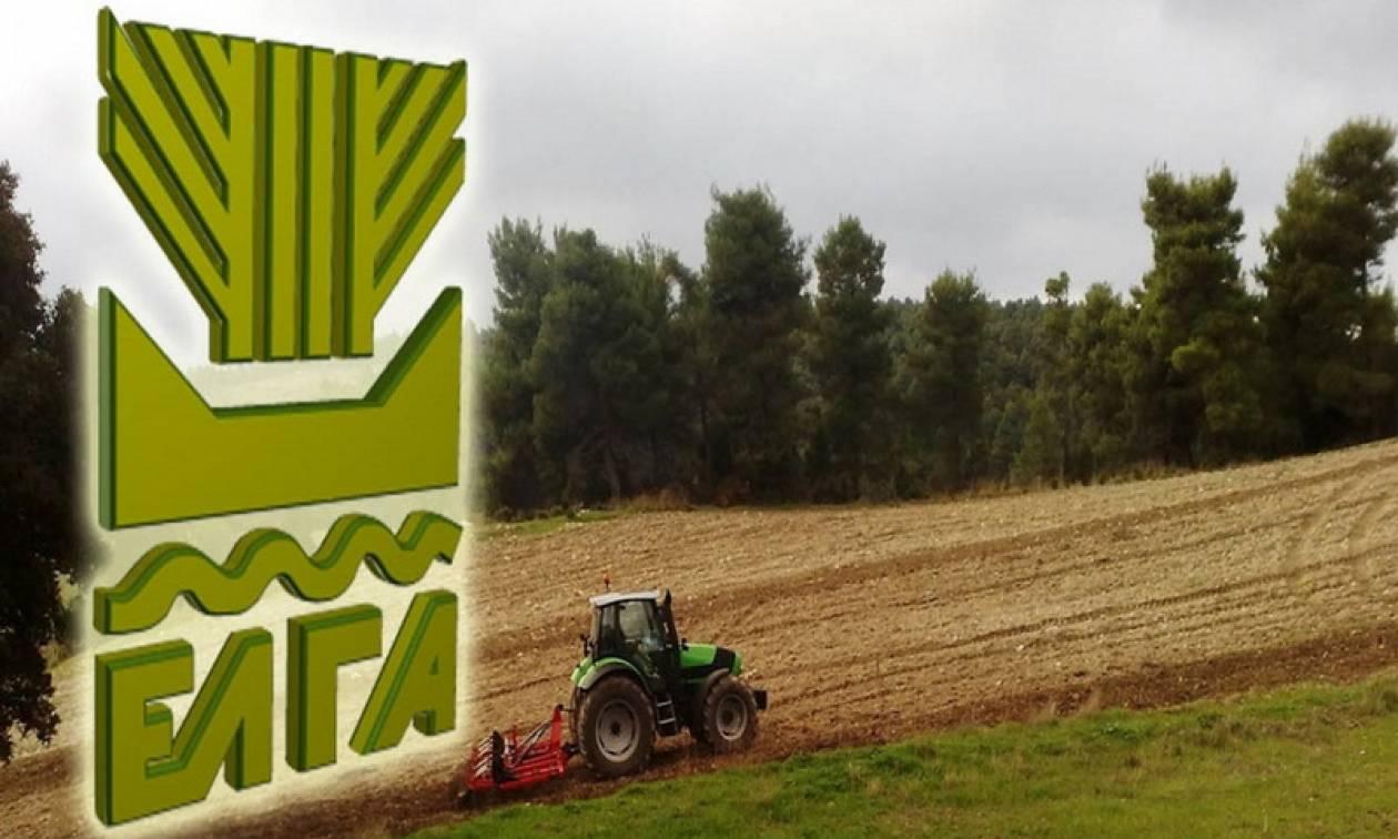 ΕΛΓΑ: Σήμερα (26/9) η καταβολή των αποζημιώσεων σε 66.148 αγρότες και κτηνοτρόφους