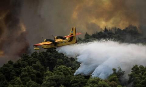 Πορτοκαλί συναγερμός! Ο χάρτης πρόβλεψης κινδύνου πυρκαγιάς για την Τετάρτη 26/9 (pics)