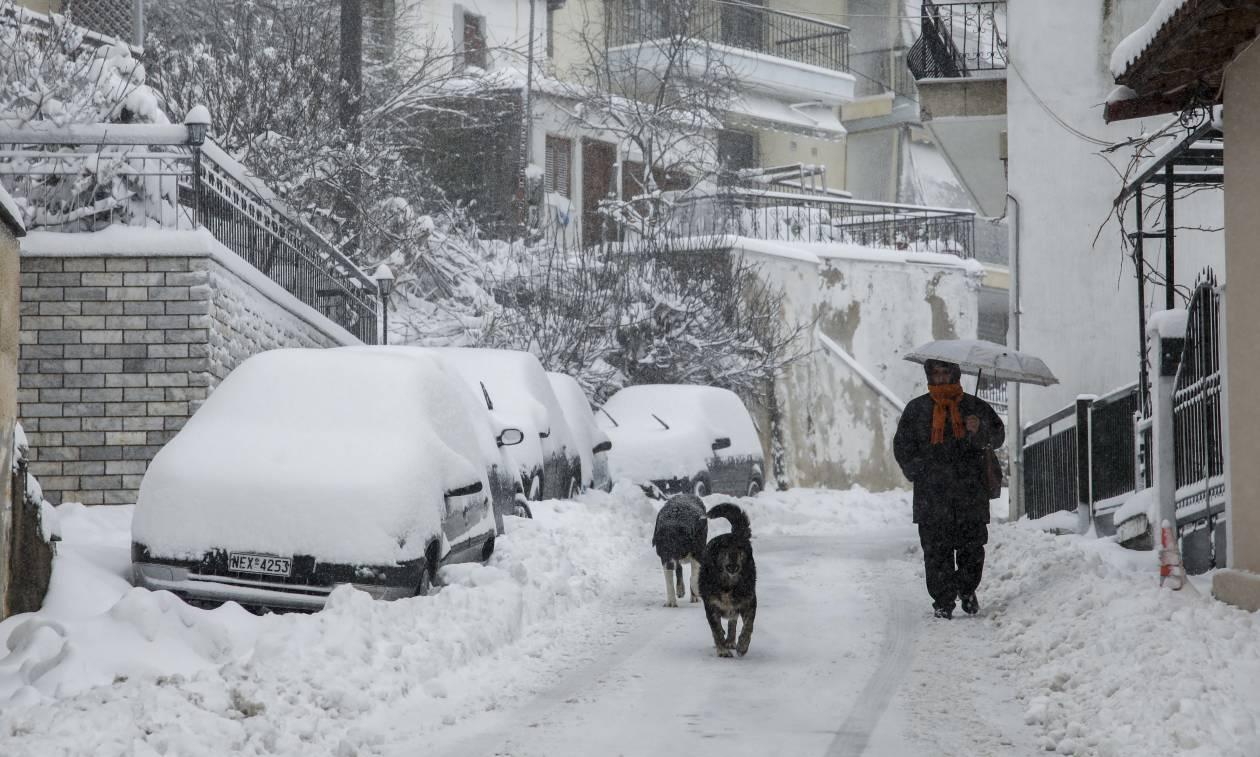 Κακοκαιρία: Ο «Ξενοφών» έφερε τα πρώτα χιόνια στην Στερεά Ελλάδα – Δείτε πού το έστρωσε (pic)